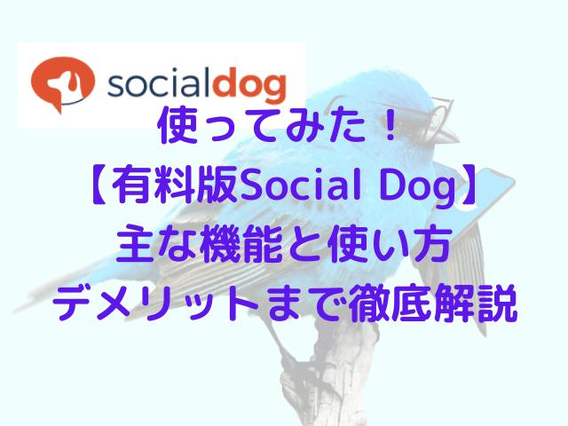 socialdog(ソーシャルドッグ )有料版アイキャッチ